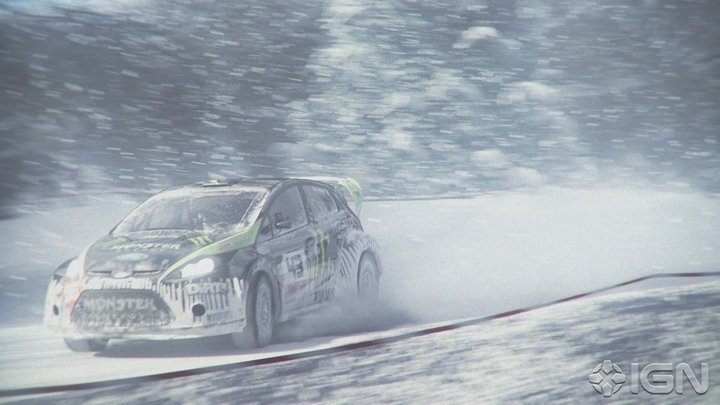 DIRT 3 in-game photo