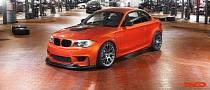 IND BMW 1M